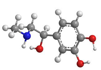 Research paper on organic chemistry paper